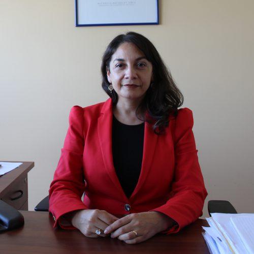 Andrea Catalán Vásquez